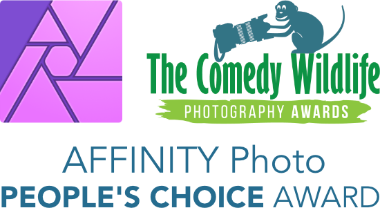 Affinity Photo People's Choice Award